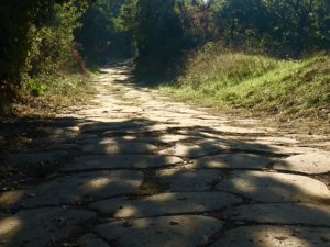 la mia Via Francigena Roma Rovereto Viaggiatore Lento ciclovia viaggio pellegrino pellegrinaggio magna Via Francigena bikepacking etruschi Canterbury abate Sigerico via cassia antica