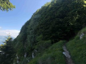 Altopiano di Brentonico, Monte Baldo in bicicletta, Trentino Alto Adige, Viaggiatore Lento, visit trentino, cicloturismo, ciclovia, bikepacking, panorama, parco naturale del monte baldo, il monte baldo in bici, viaggiare in trentino, vacanze in trentino con la bicicletta, tracce gps del trentino,
