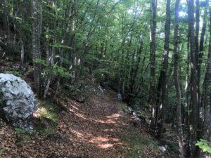 Trentino, Viaggiatore Lento