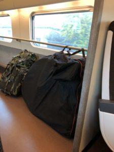 viaggiatore lento, surly, bagagli sulla bici, borse per bicicletta, viaggiare in bici, bikepacking, vacanze in bicicletta, trasportare la bici in viaggio, bagagli e bicicletta, come trasportare la bici in treno, come trasportare la bici in aereo, imballare la bici, smontare la bici, impacchettare la bicicletta