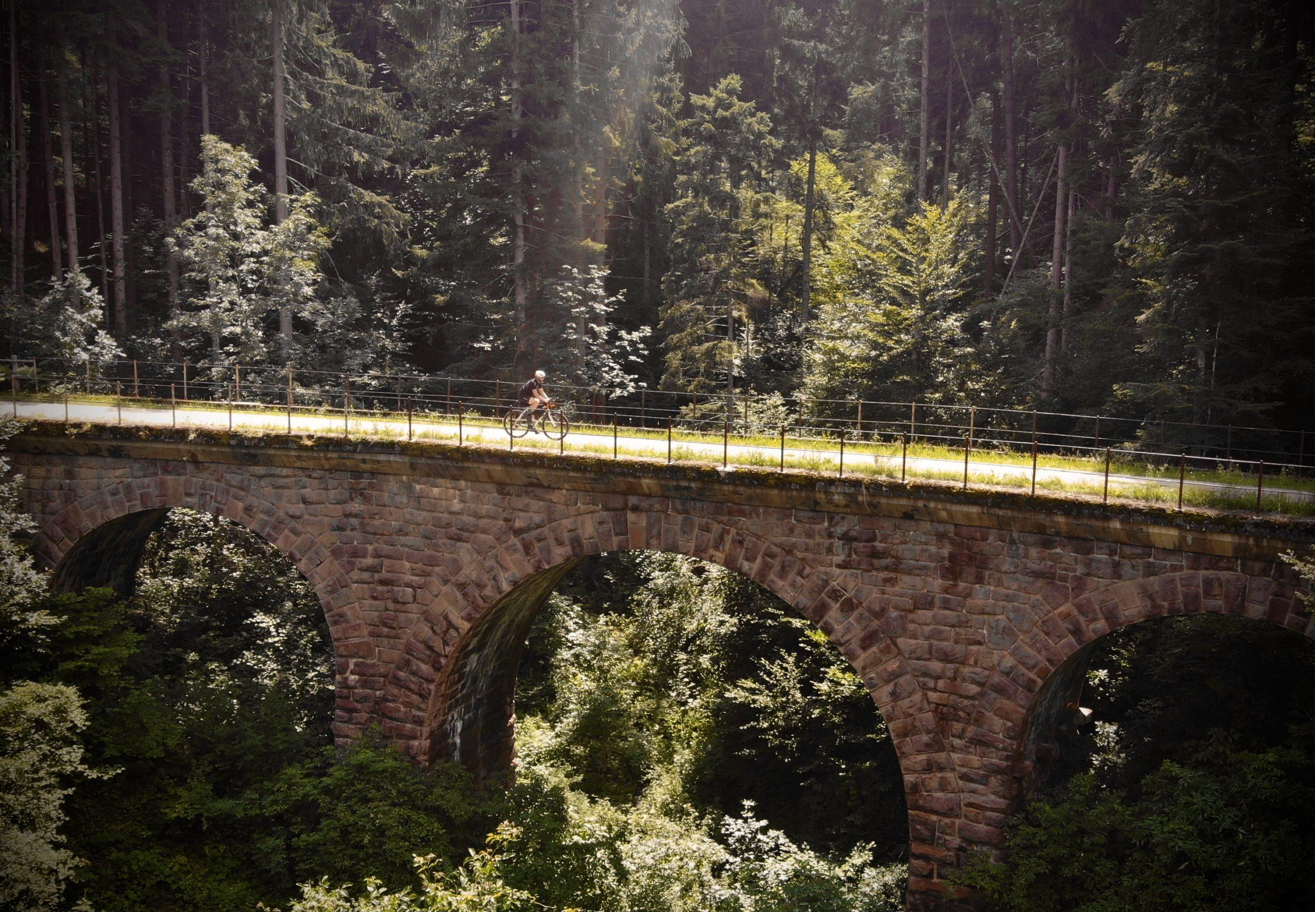 viaggiatore lento, la vecchia ciclabile della Val di Fiemme, cicloturismo in Trentino Alto Adige, itinerari gravel in trentino, piste ciclabili del Trentino Alto Adige, cicloturismo in trentino, itinerari cicloturoistici del Trentino Alto Adige, il trentino in bicicletta, viaggiare in bici in trentino, turismo in trentino, vacanze in bicicletta nella provincia di Trento e Bolzano.